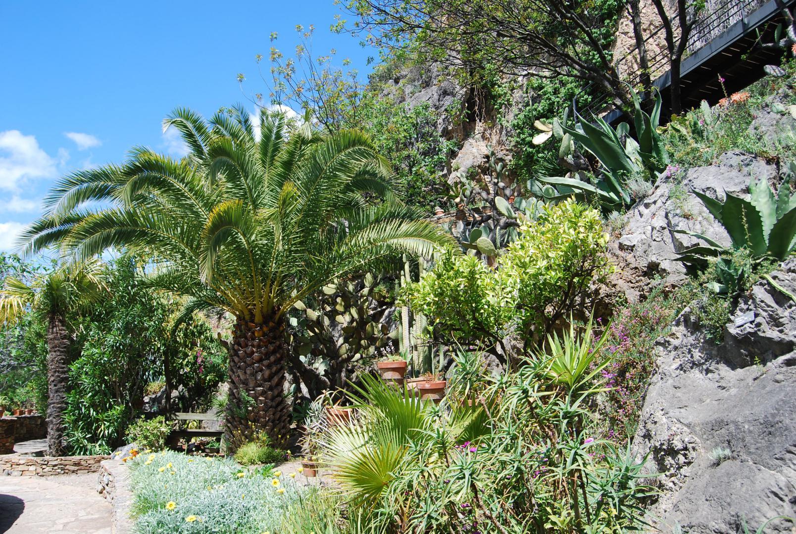 Site Officiel Du Jardin Mediterraneen De Roquebrun